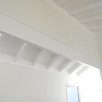 Ceiling Repaint